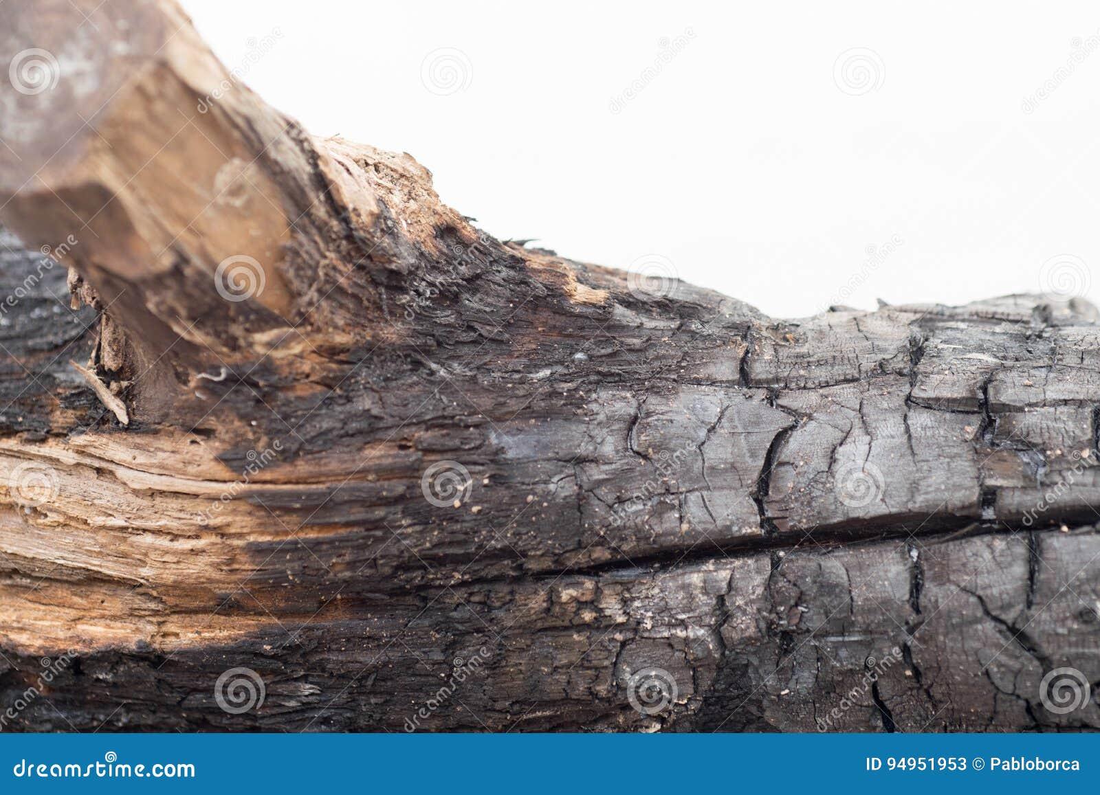 木被烧的纹理