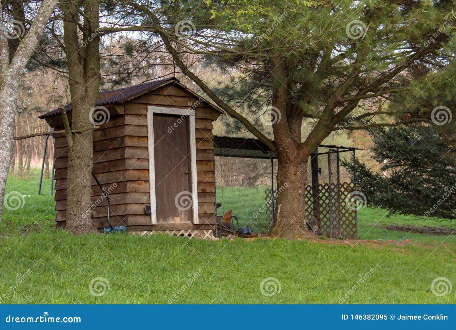 木鸡舍在有篱芭的农村后院