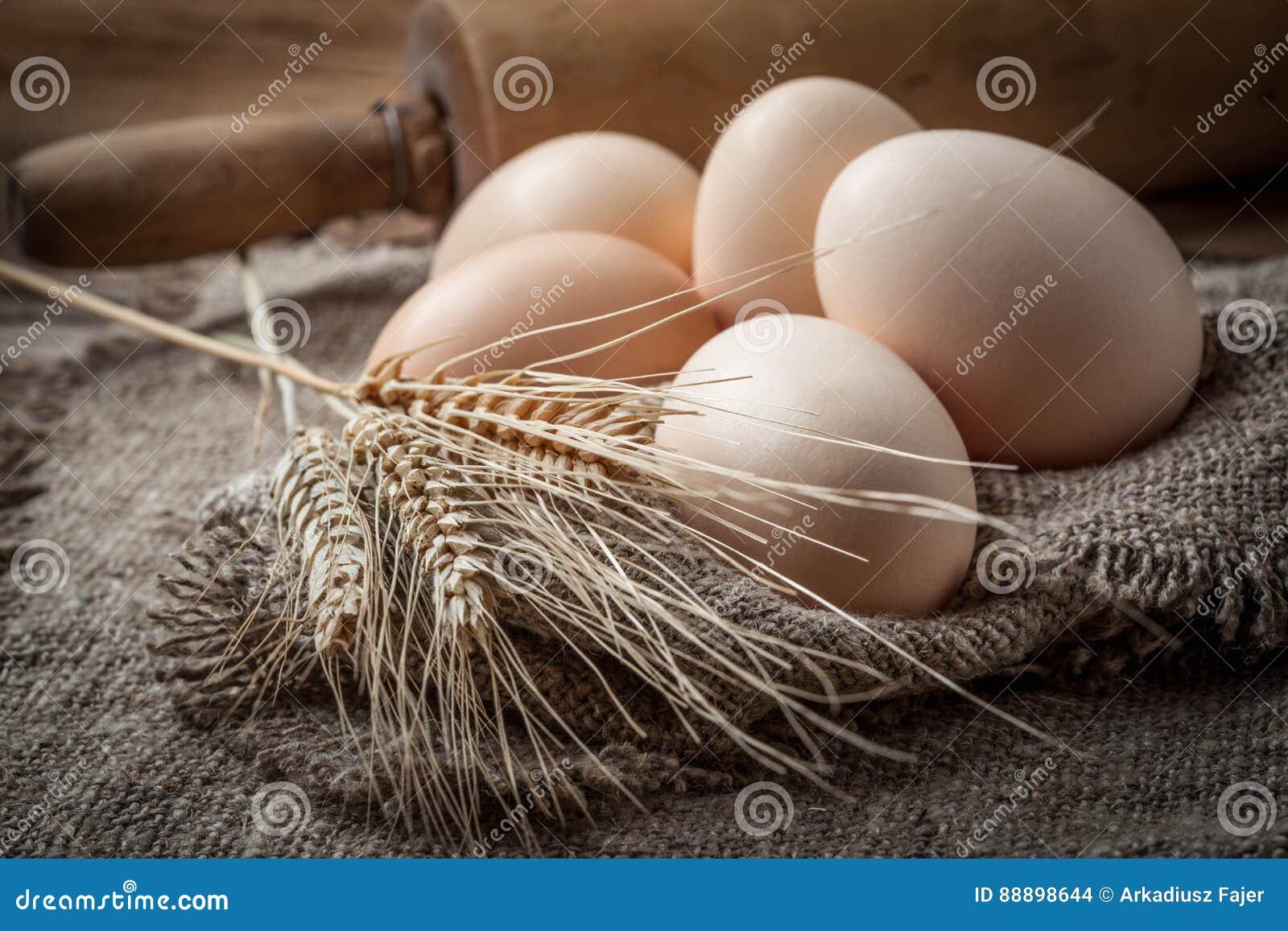 未加工的有机农厂鸡蛋
