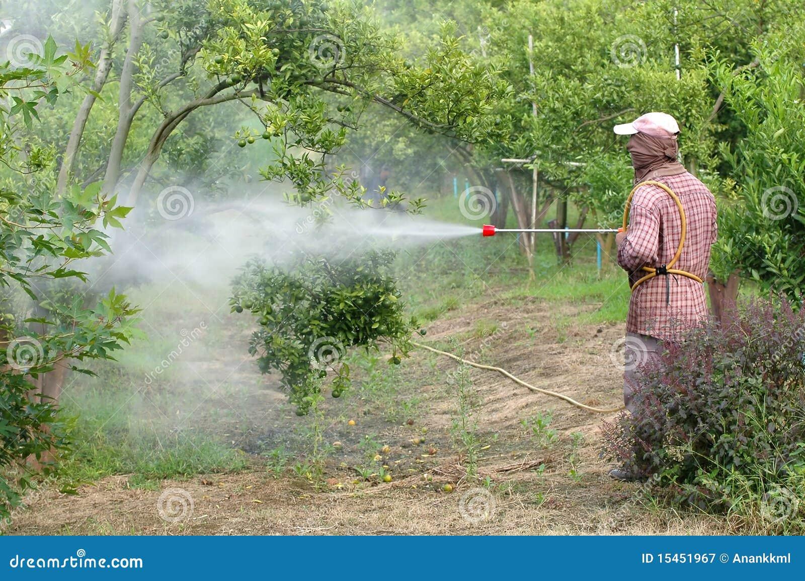 杀虫剂喷洒