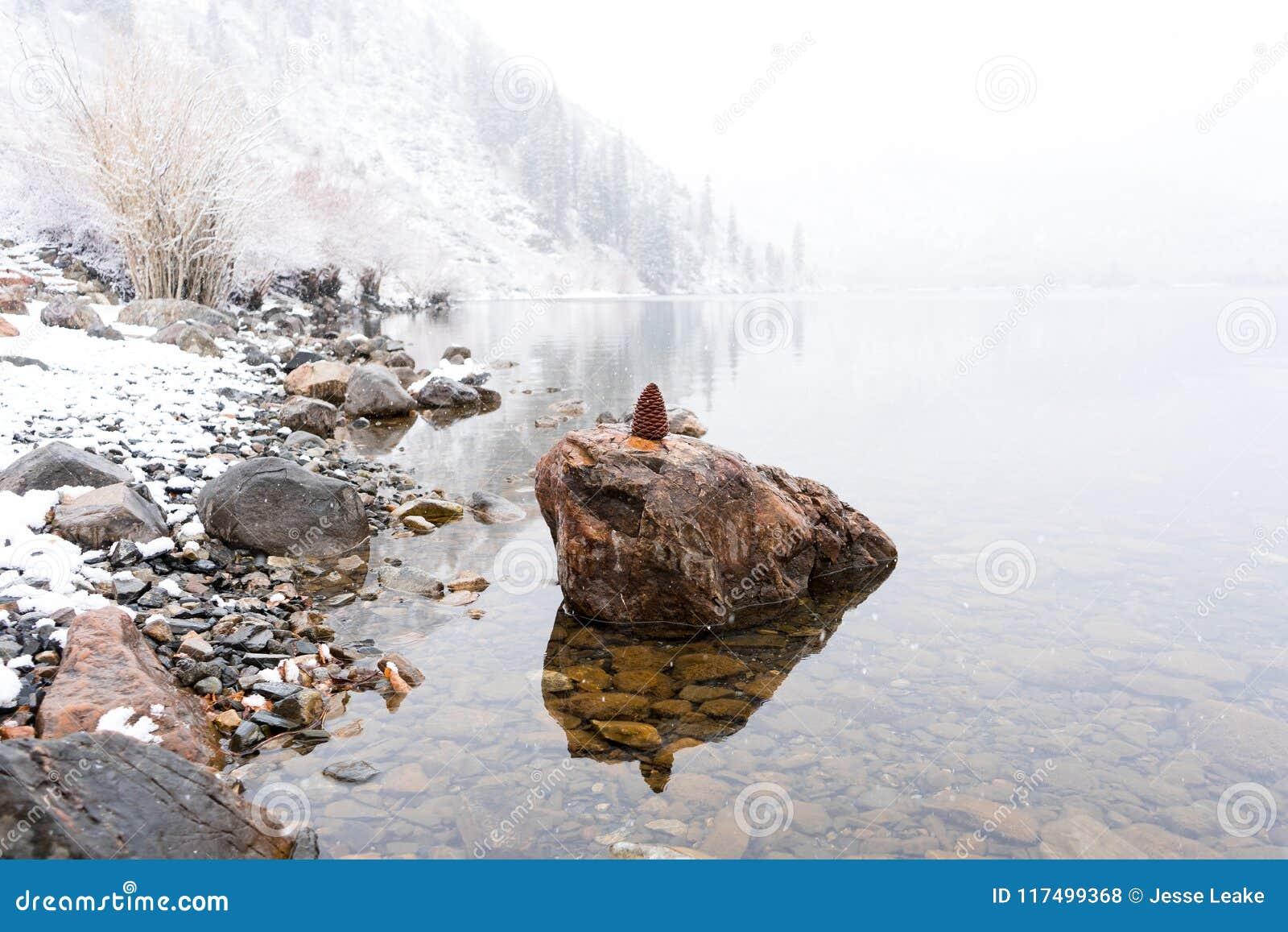 杉木锥体坐在Convict湖的一个岩石