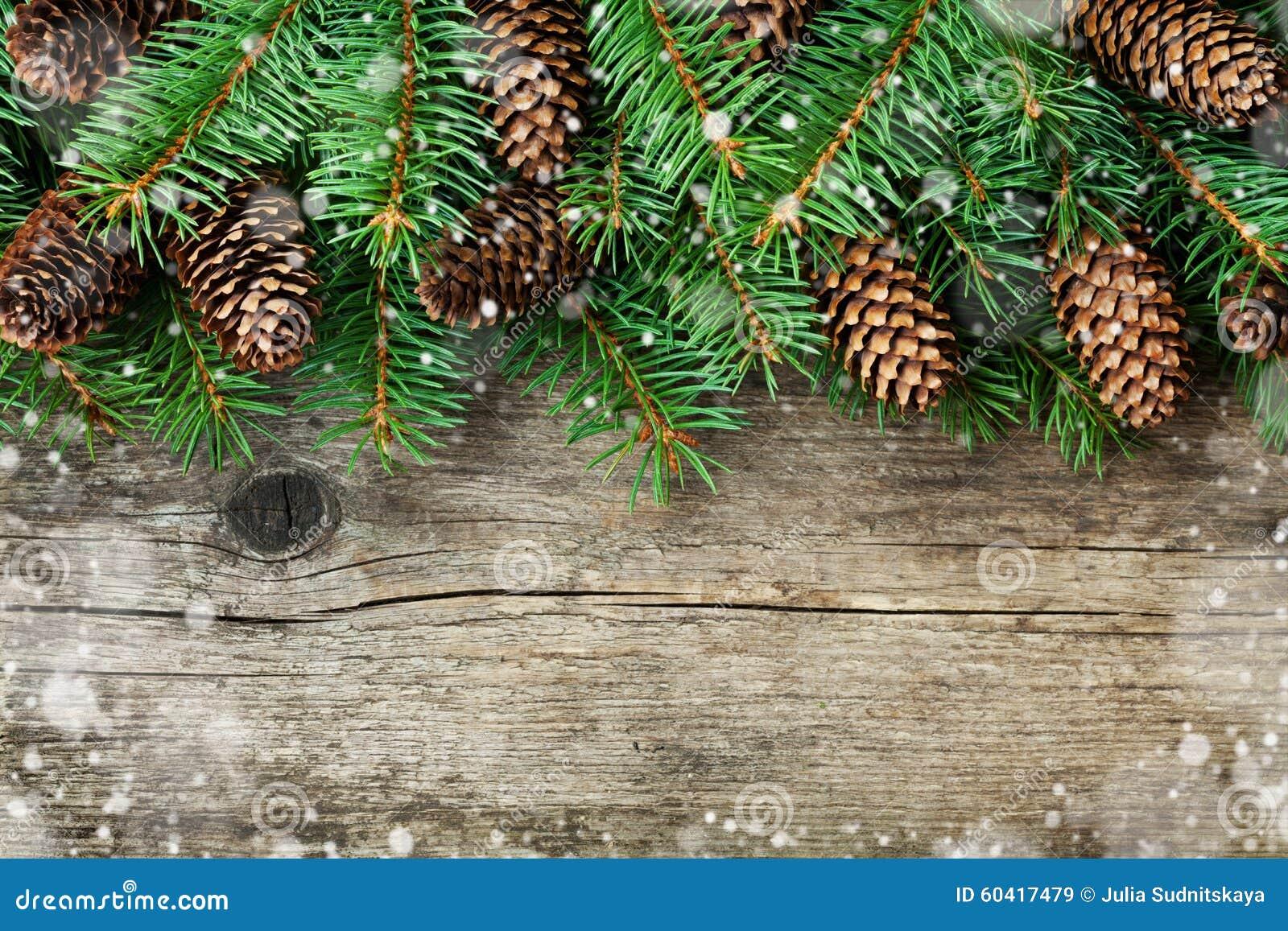 杉树和针叶树锥体的圣诞节装饰在织地不很细木背景,不可思议的雪作用
