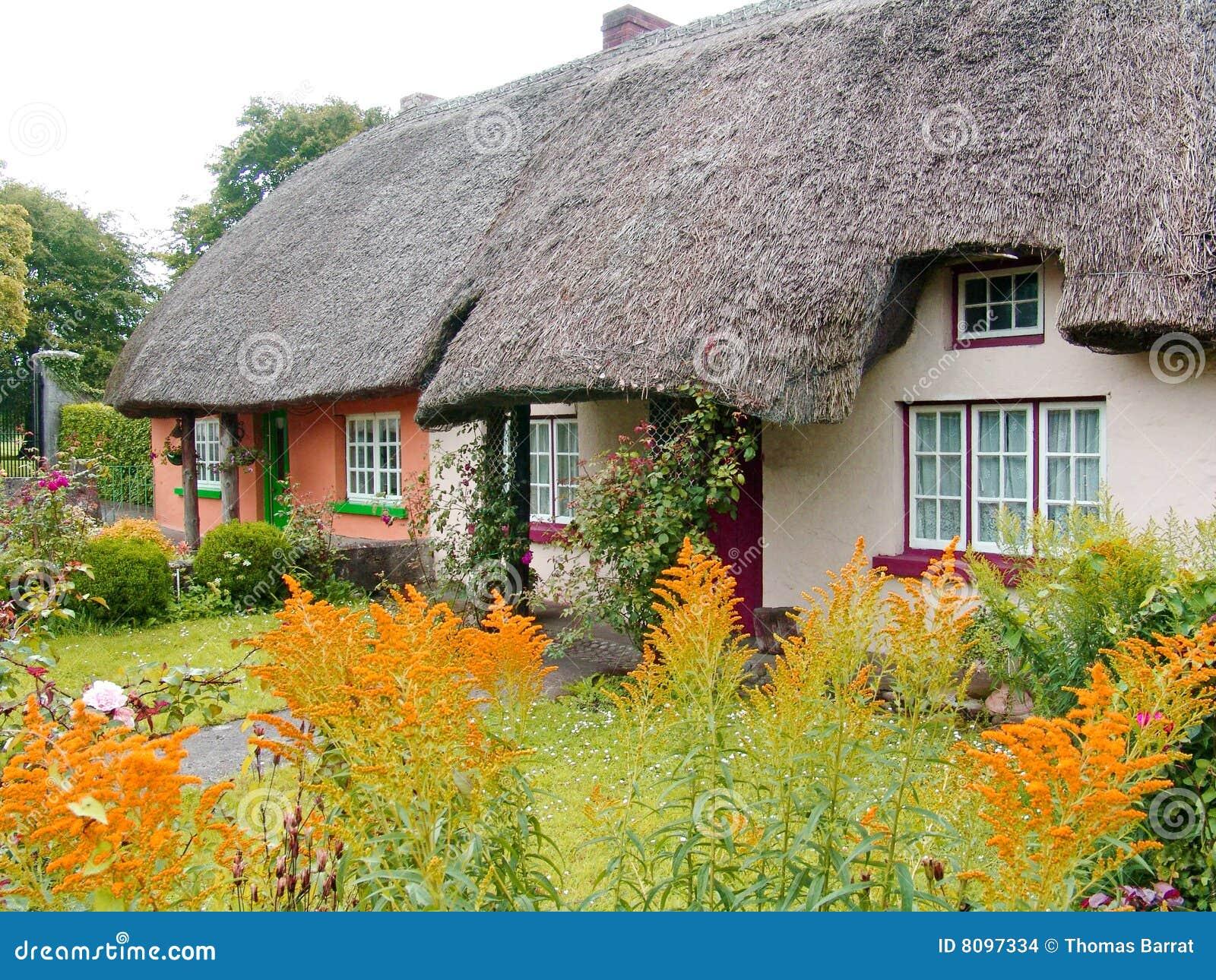 村庄爱尔兰屋顶盖了典型