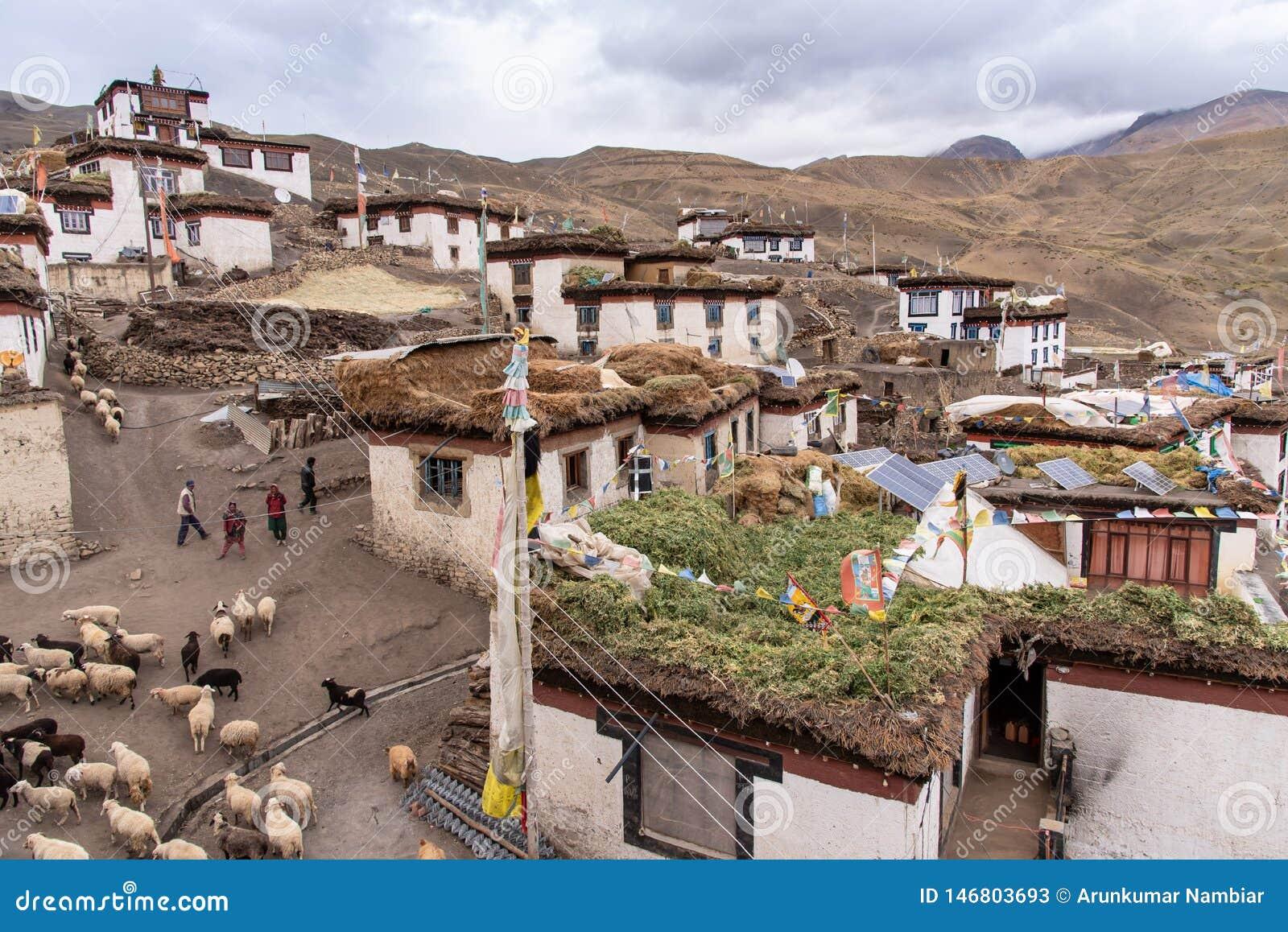 村庄生活,斯皮迪,藏语,himachal