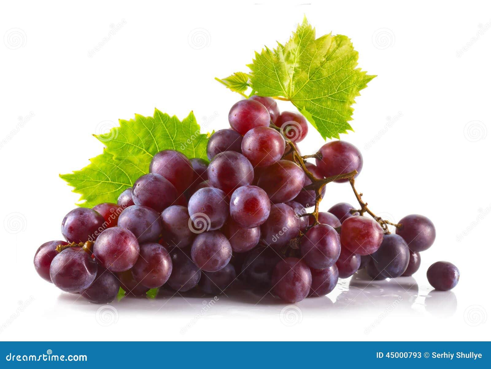 束与在白色隔绝的叶子的成熟红葡萄