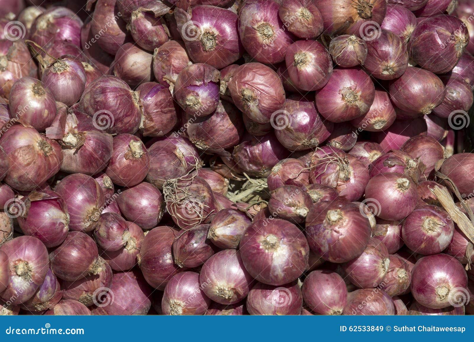 束青葱在市场上,堆红色紫色大电灯泡青葱,许多青葱