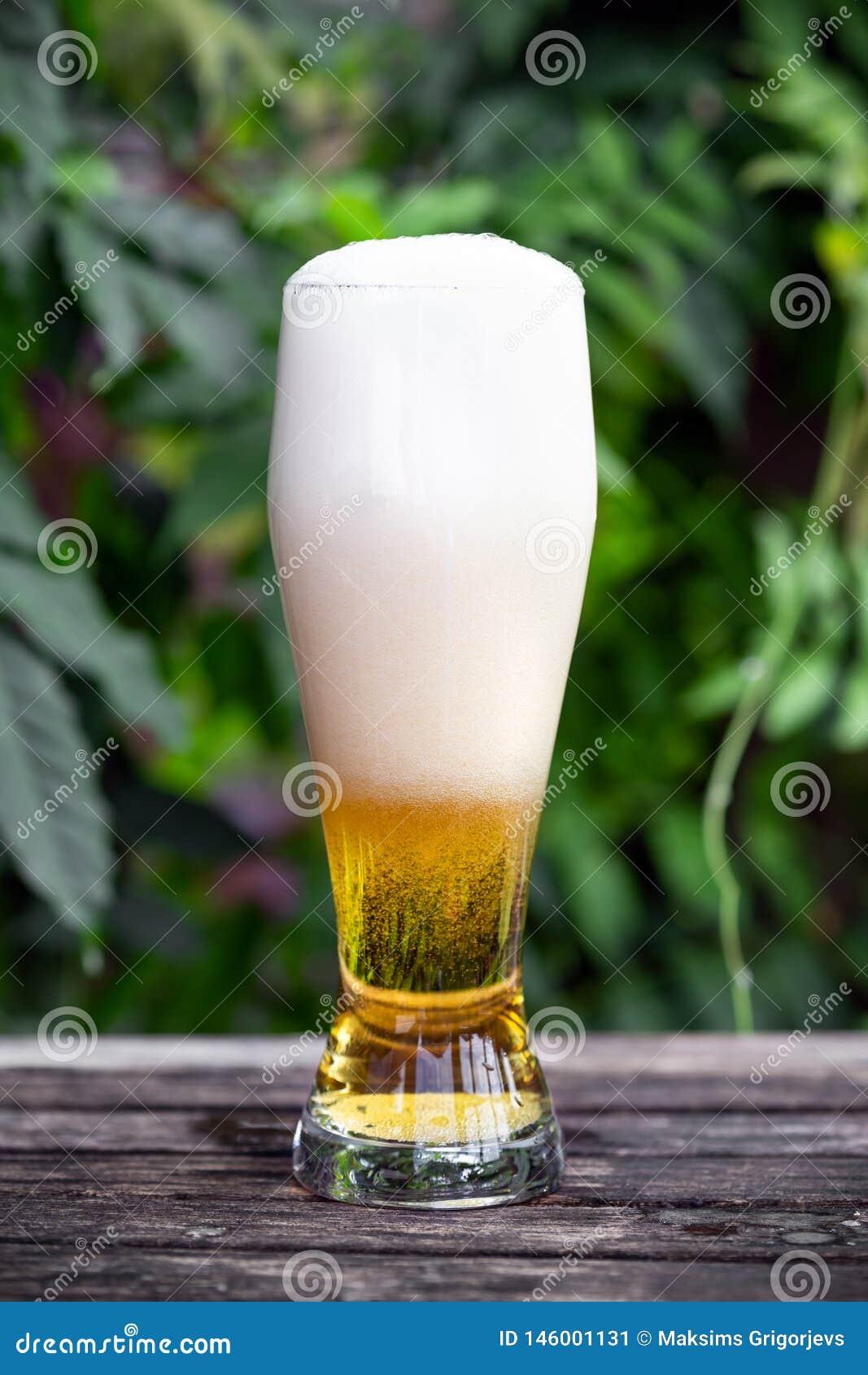 杯在木桌上的冰镇啤酒在庭院里有绿色背景