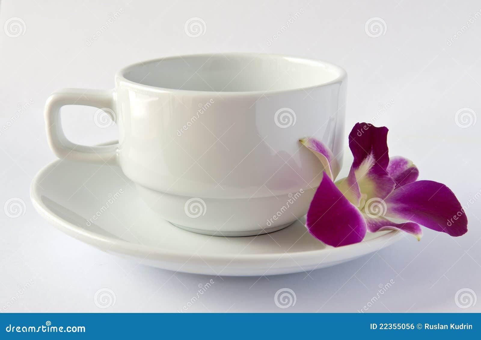杯子空的兰花茶碟白色