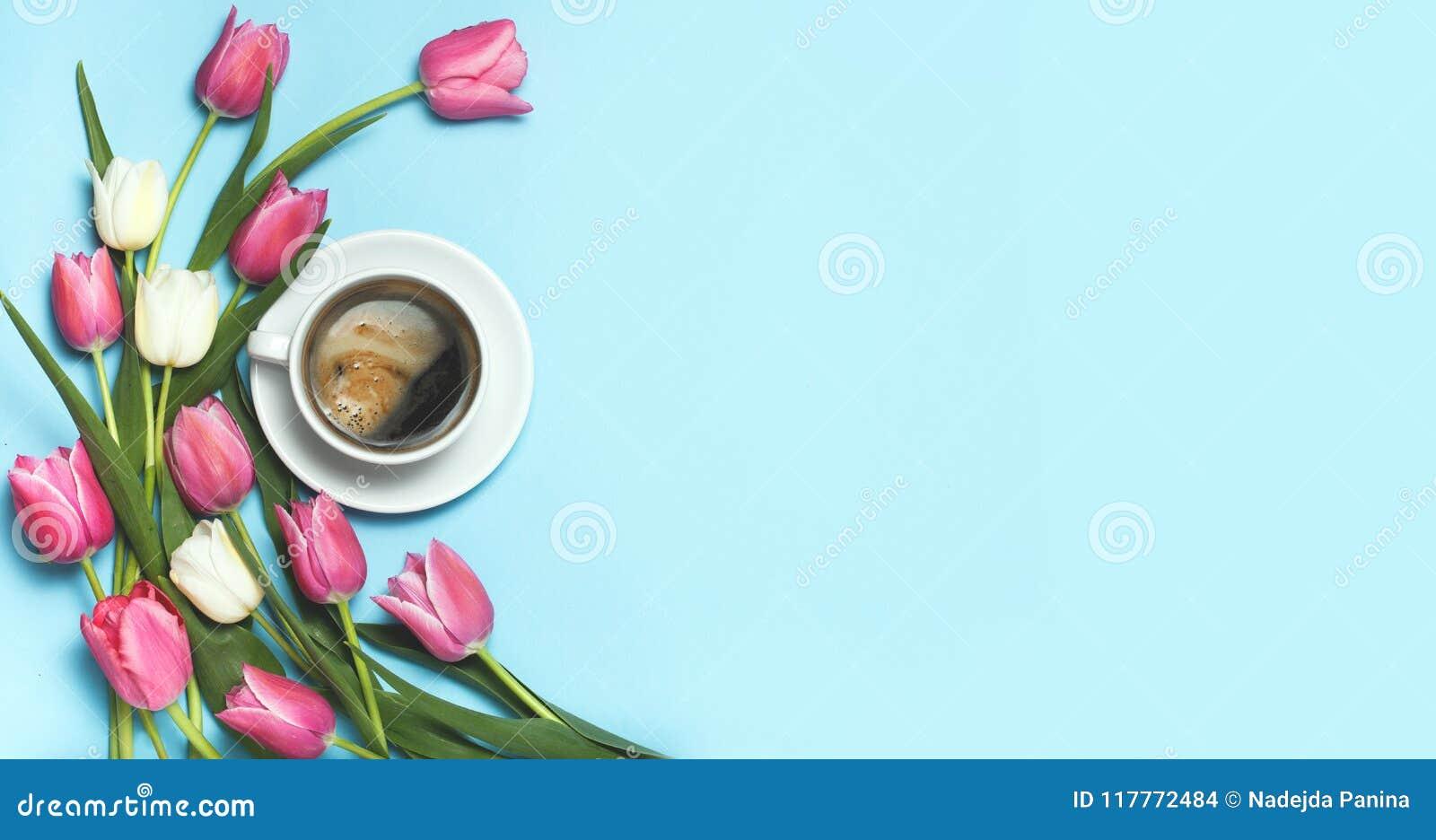 杯coffe和在蓝色背景的桃红色郁金香