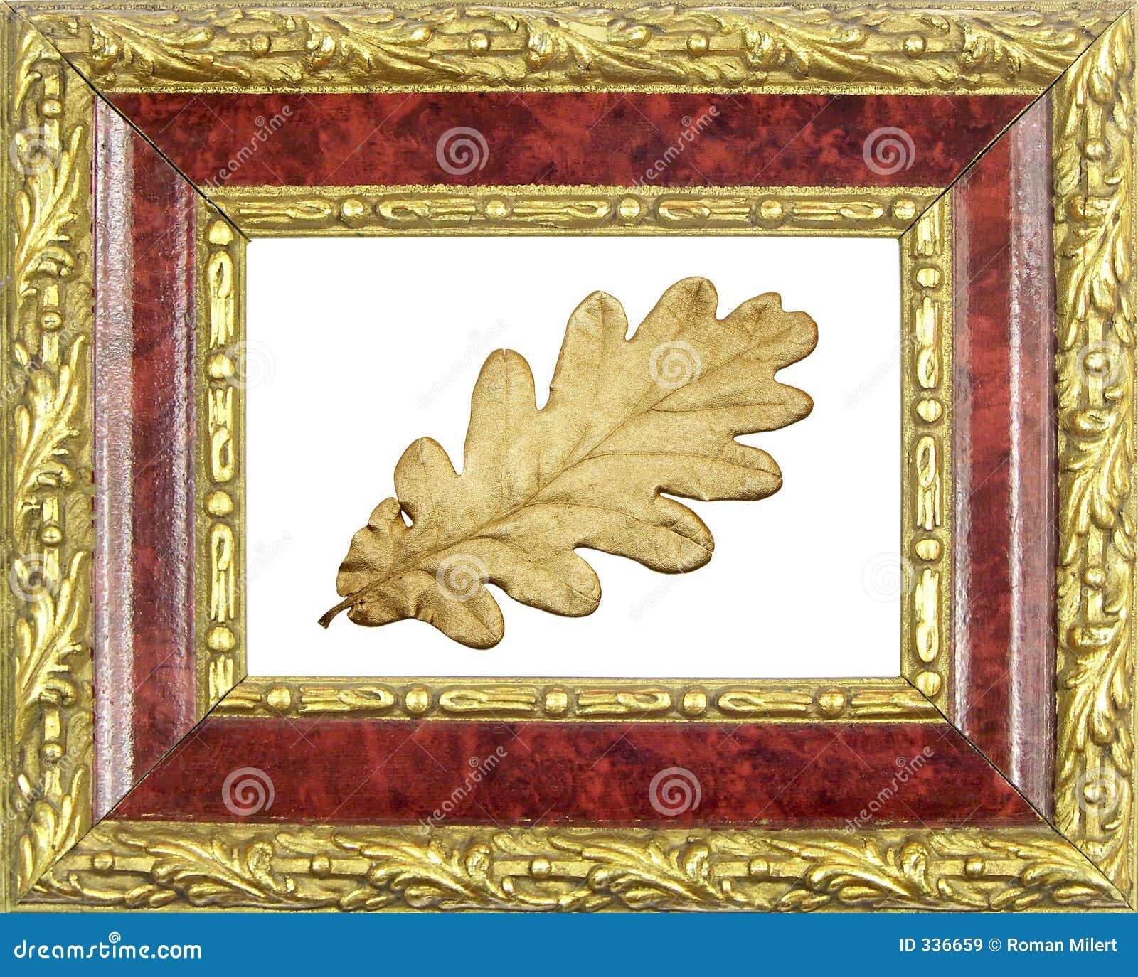 构成的被镀金的叶子橡木