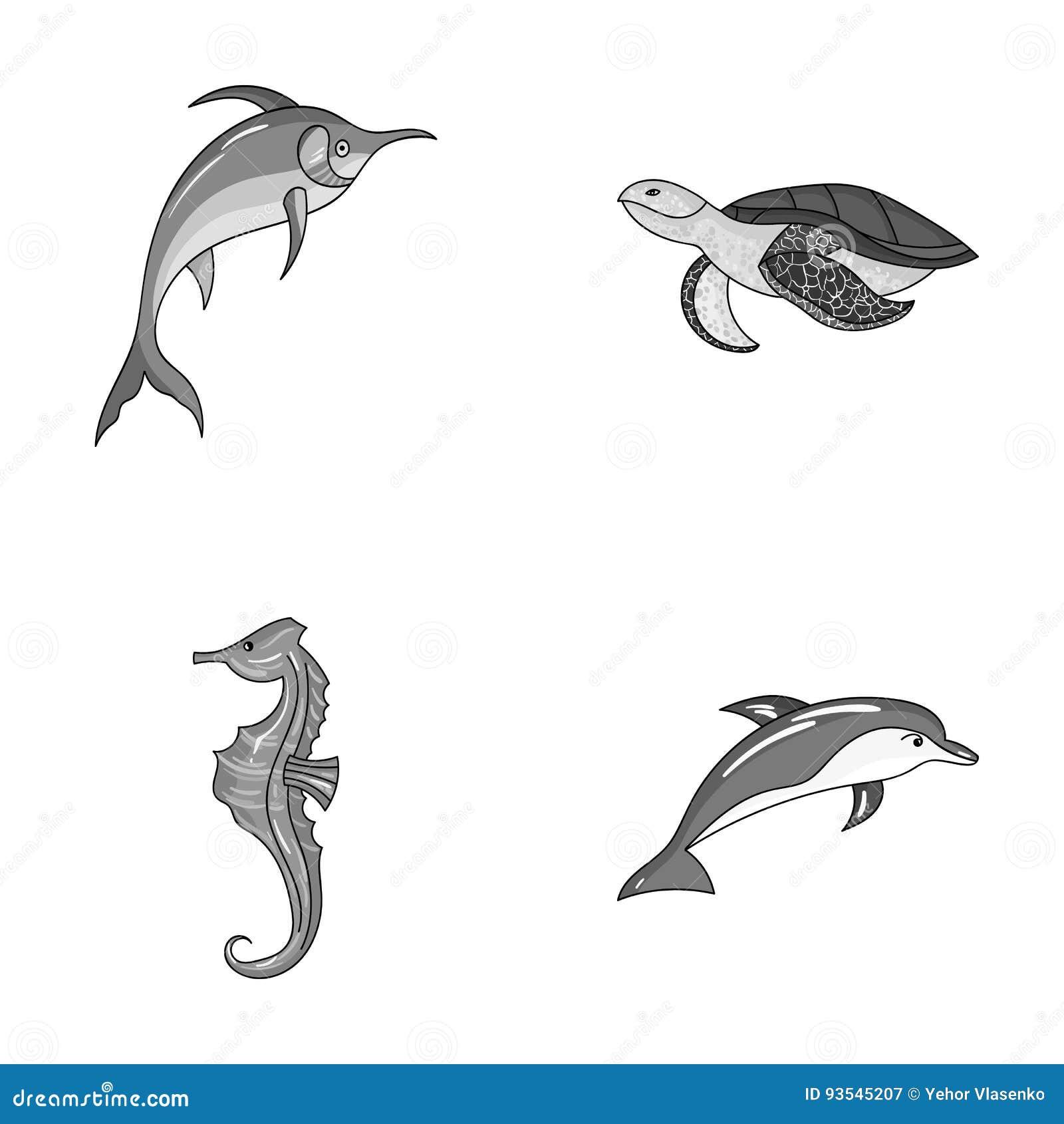 默林、乌龟和其他种类 海洋动物设置了在单色样式传染媒介标志股票例证的汇集象