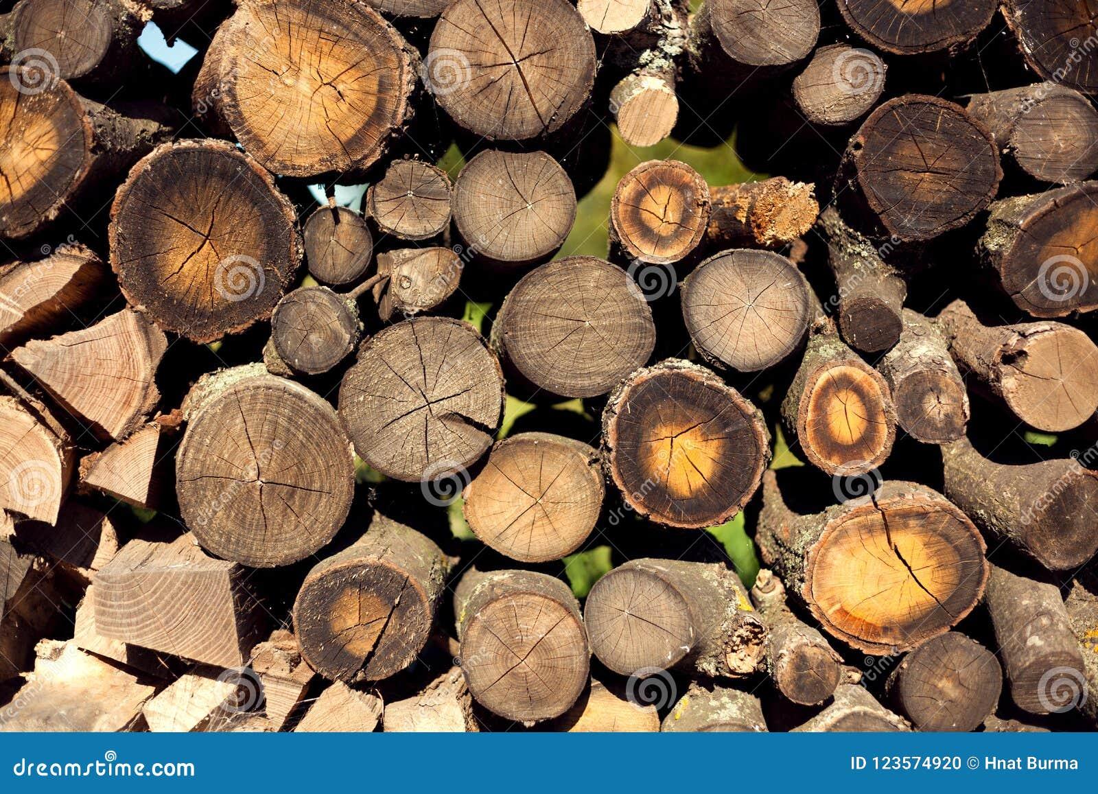 林业,堆木头,柴堆,堆,日志堆,木浆
