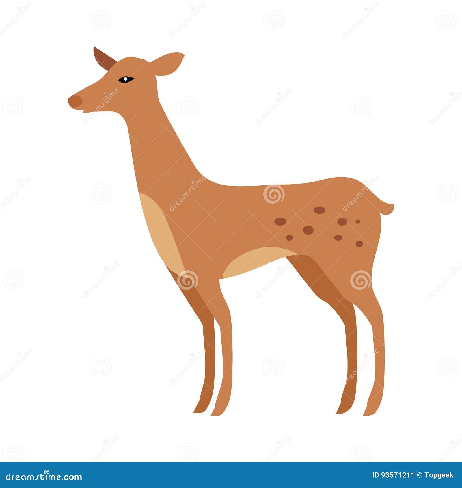 查出的小鹿 小辈嫩绿的年轻人被察觉的鹿