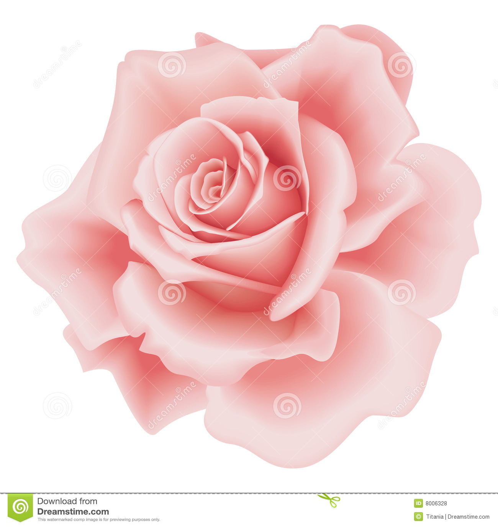 查出的粉红色上升了