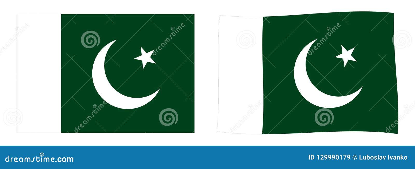 标志巴基斯坦 简单和有一点挥动的版本