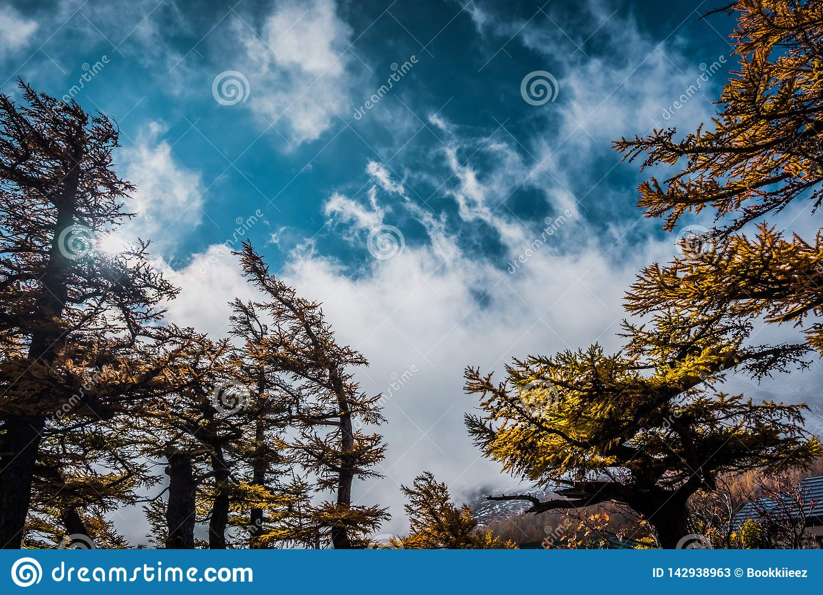 树和云彩风景与天空蔚蓝,看法从富士斯巴鲁线第5个驻地