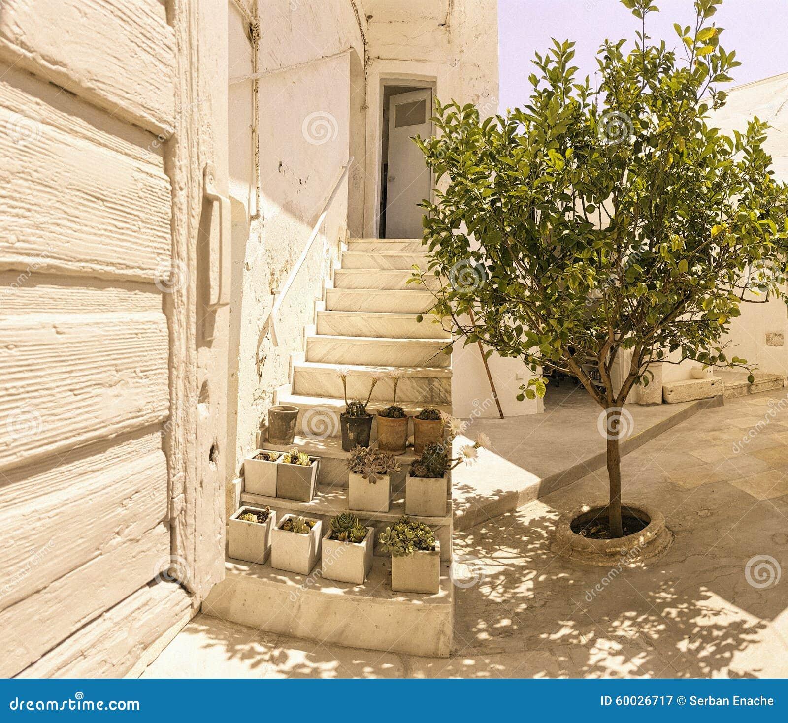 树家庭基克拉泽斯海岛,希腊外