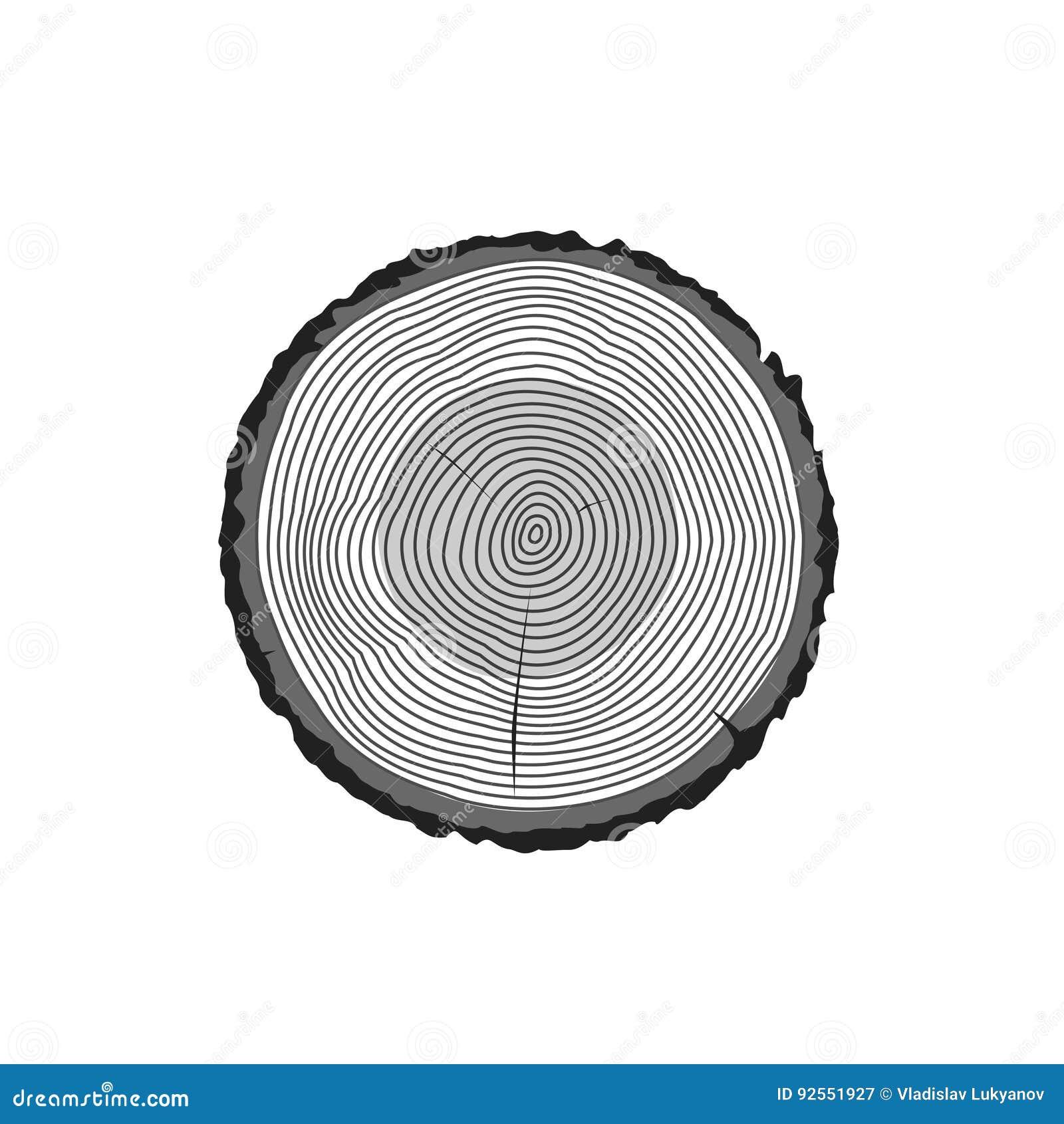 树日志敲响传染媒介象,树木短剖面黑纹理被隔绝,木木材裁减