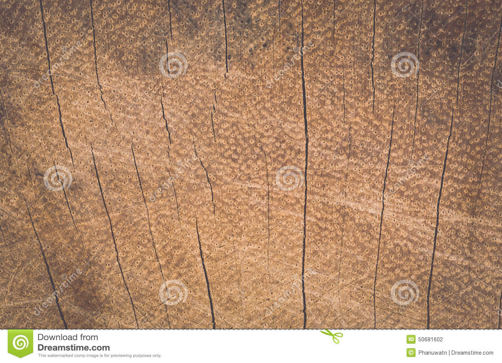 Download 树桩纹理 库存照片. 图片 包括有 停止, 板条, 模式, 抽象, 木料, 背包, 镶边, 环形, 部分 - 50681602