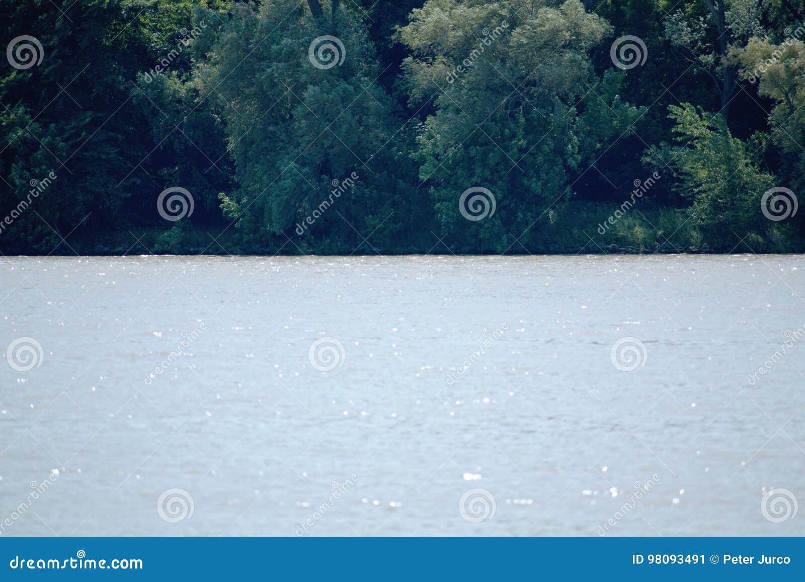 树-多瑙河