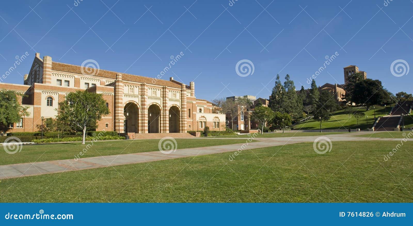 校园草坪大学