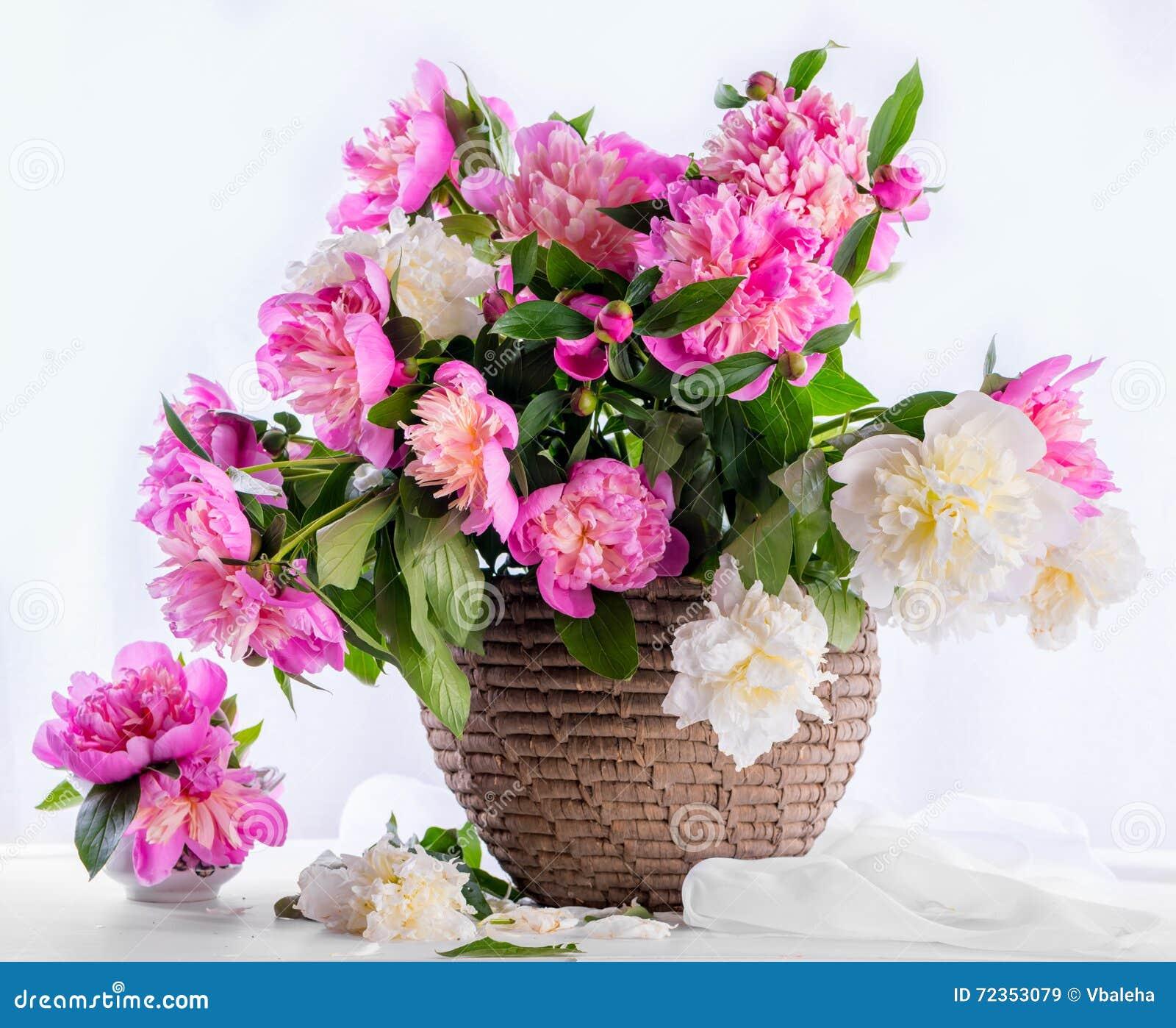 桃红色和白色牡丹美丽的花束