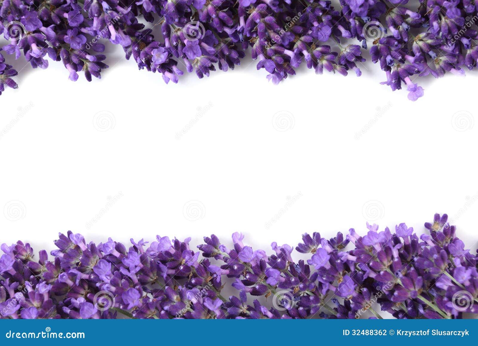 框架用淡紫色