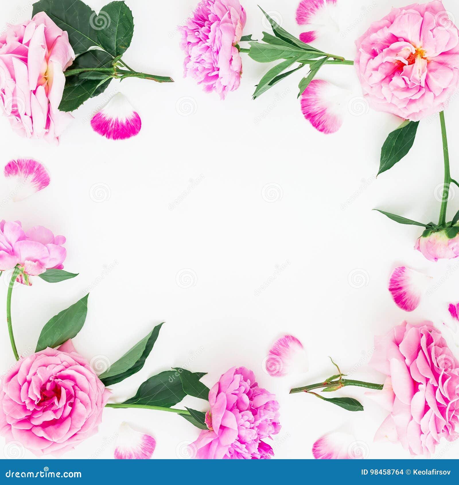 框架由桃红色牡丹花、叶子和瓣制成有空间的文本的在白色背景 平的位置,顶视图 牡丹花文本