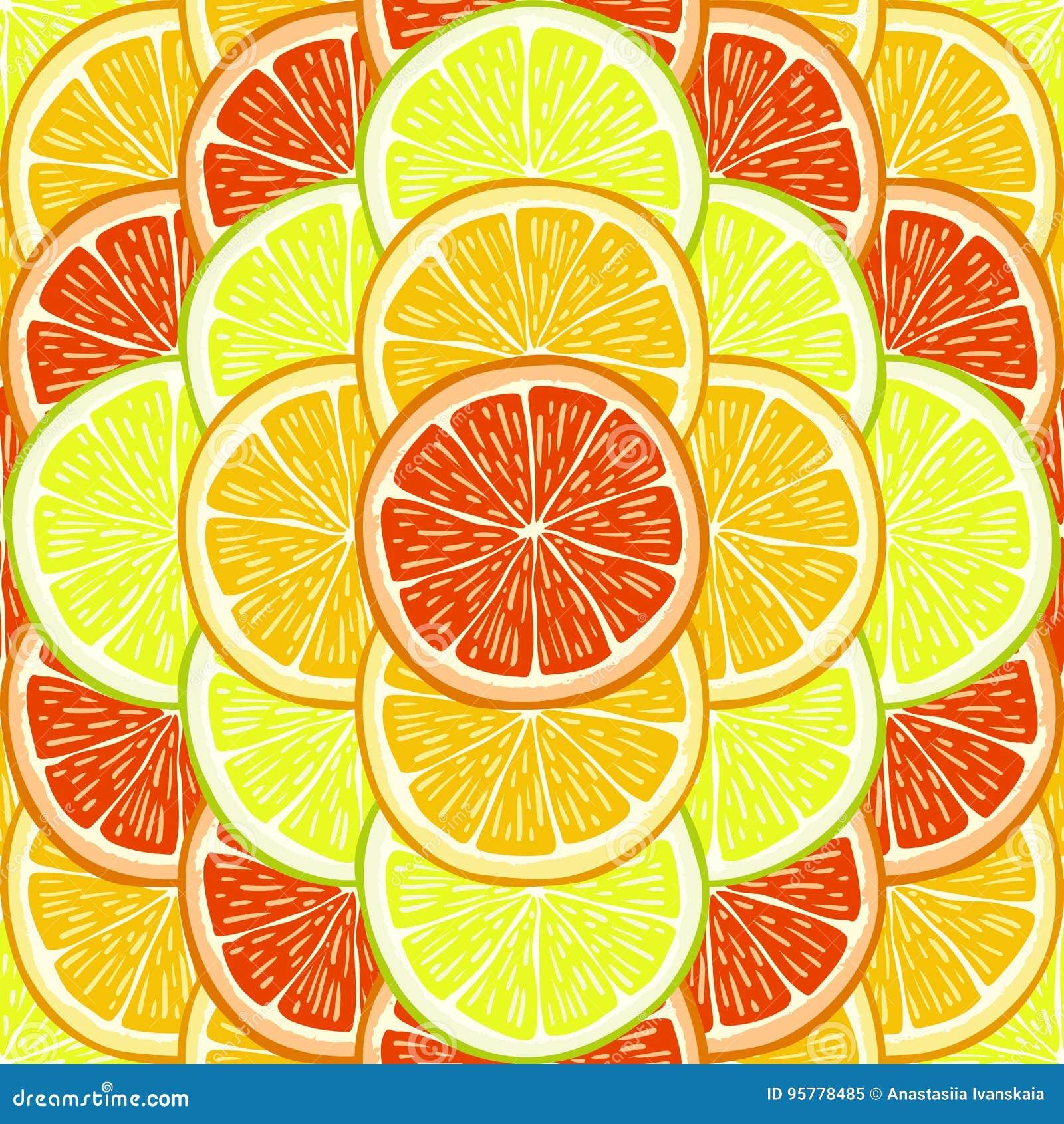 桔子、柠檬和葡萄柚切片