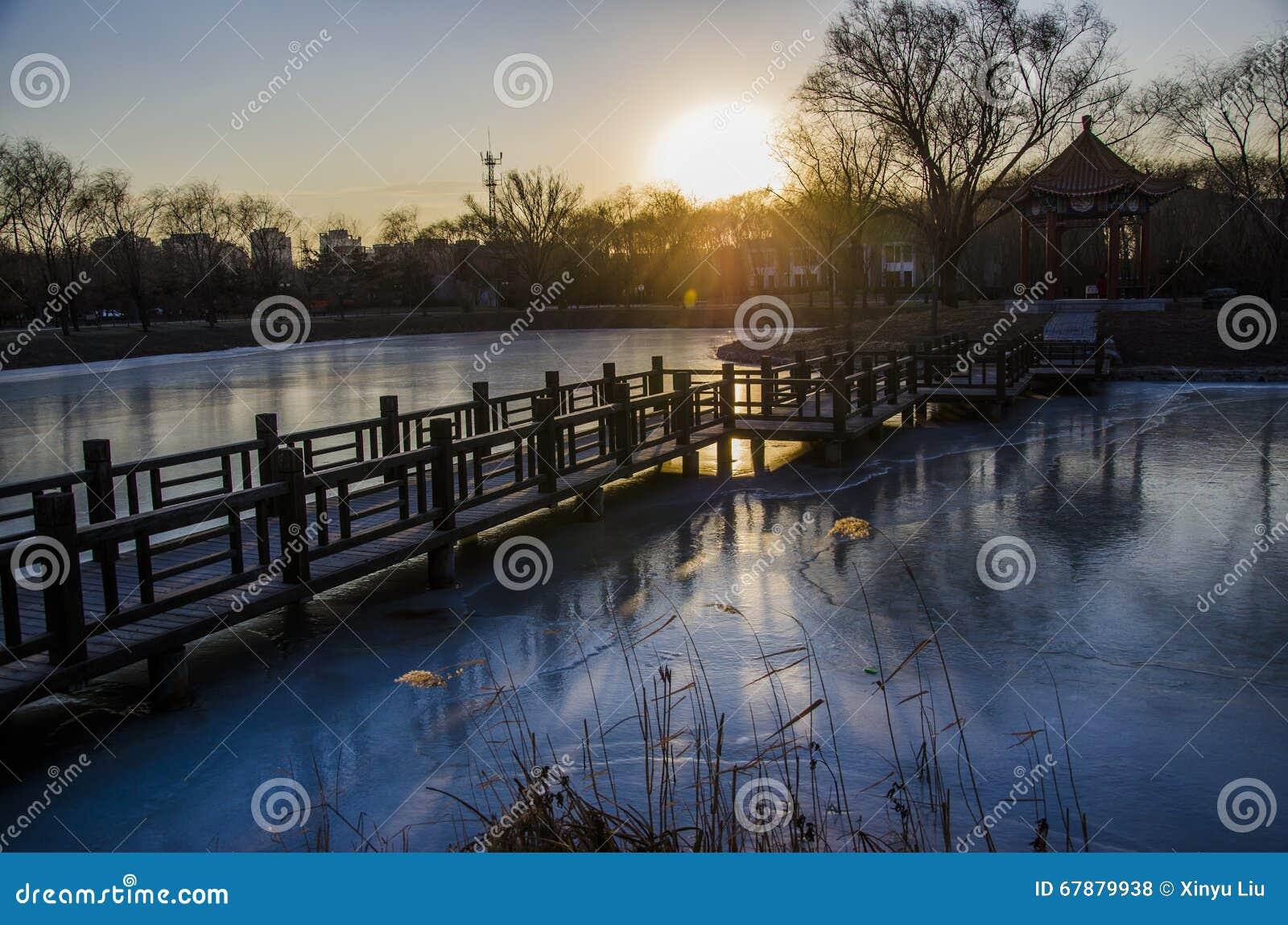 桥梁和水池由日落