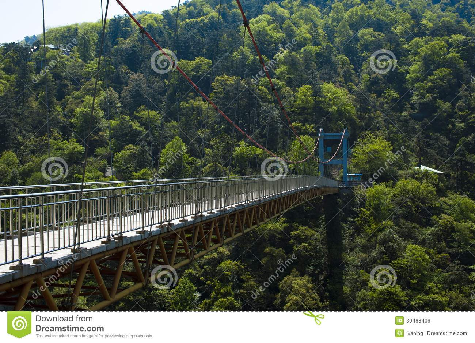桥梁在森林庐山中国里图片