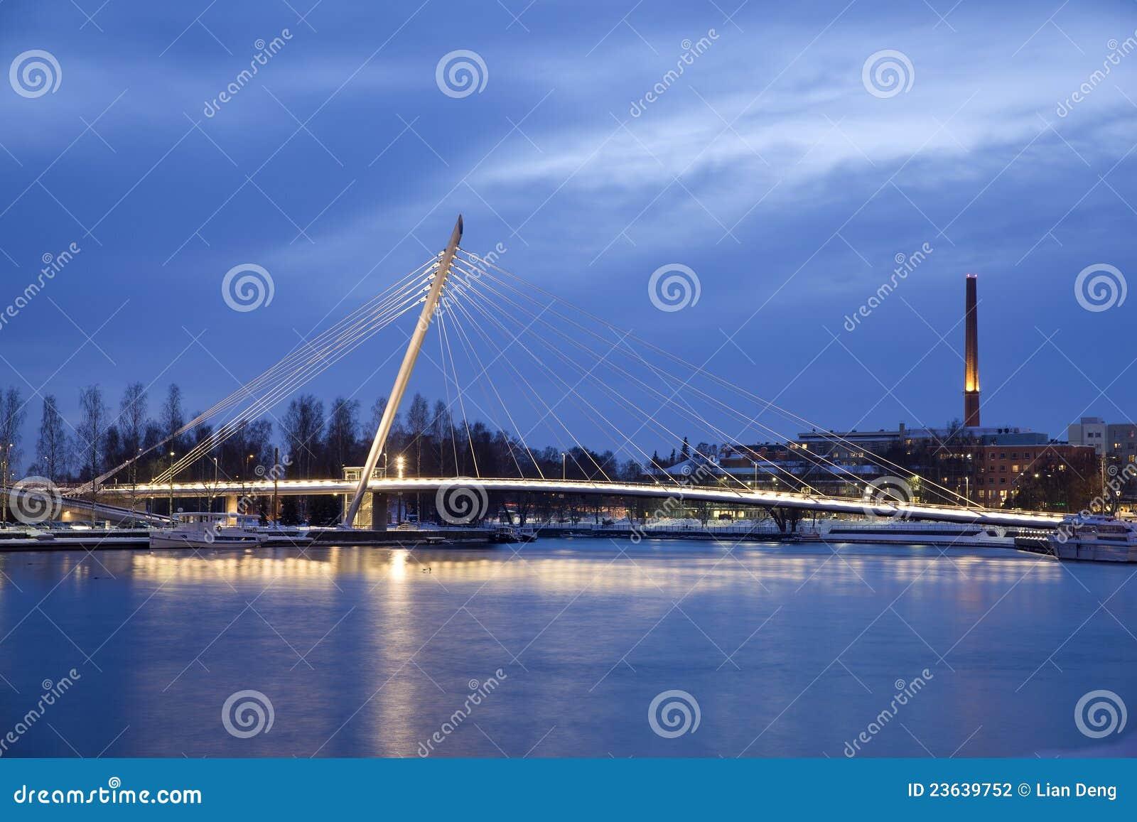 桥梁坚持的电缆晚上