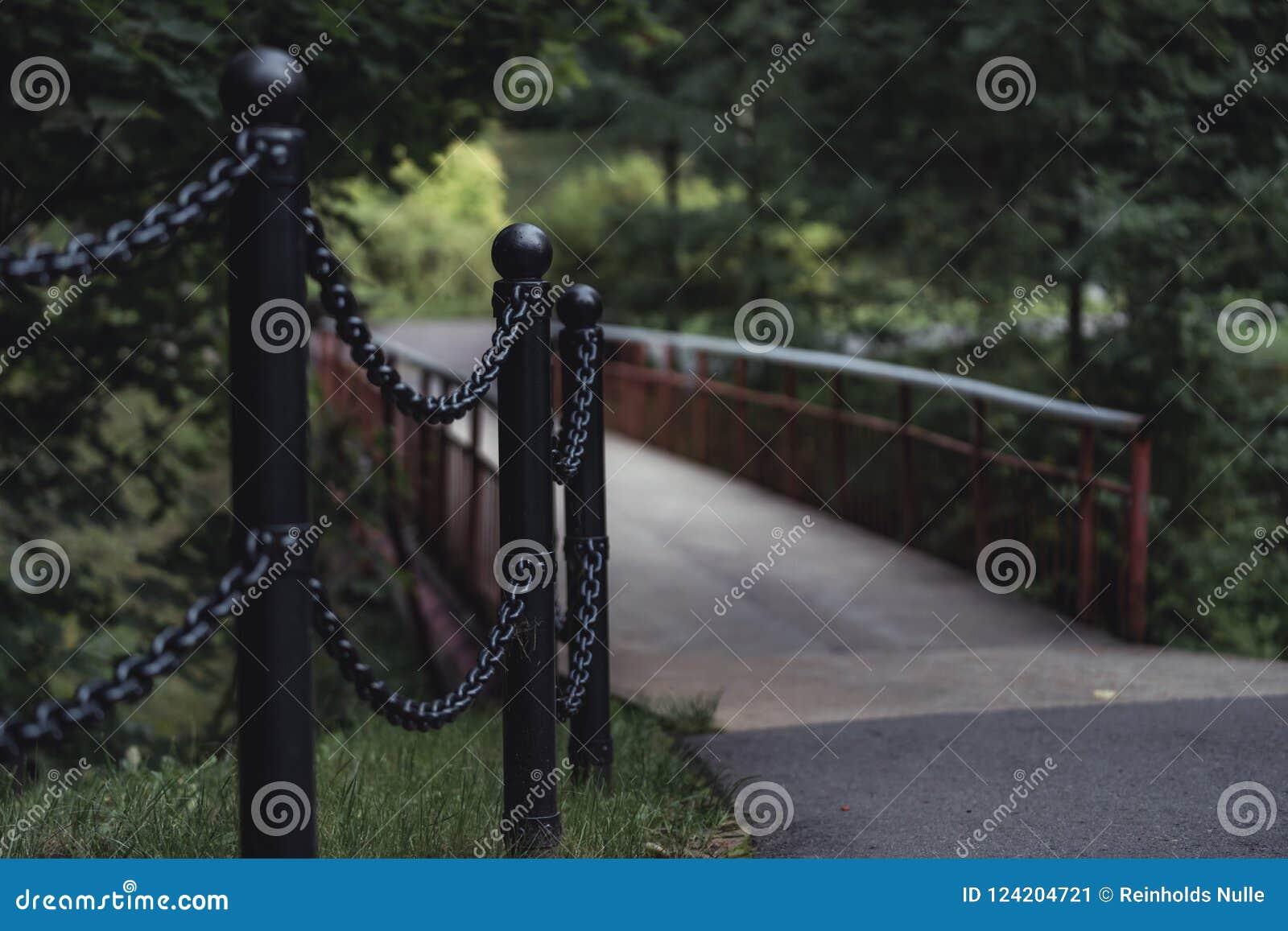 桥梁的喜怒无常的照片在一个公园,在成为不饱和的森林之间-