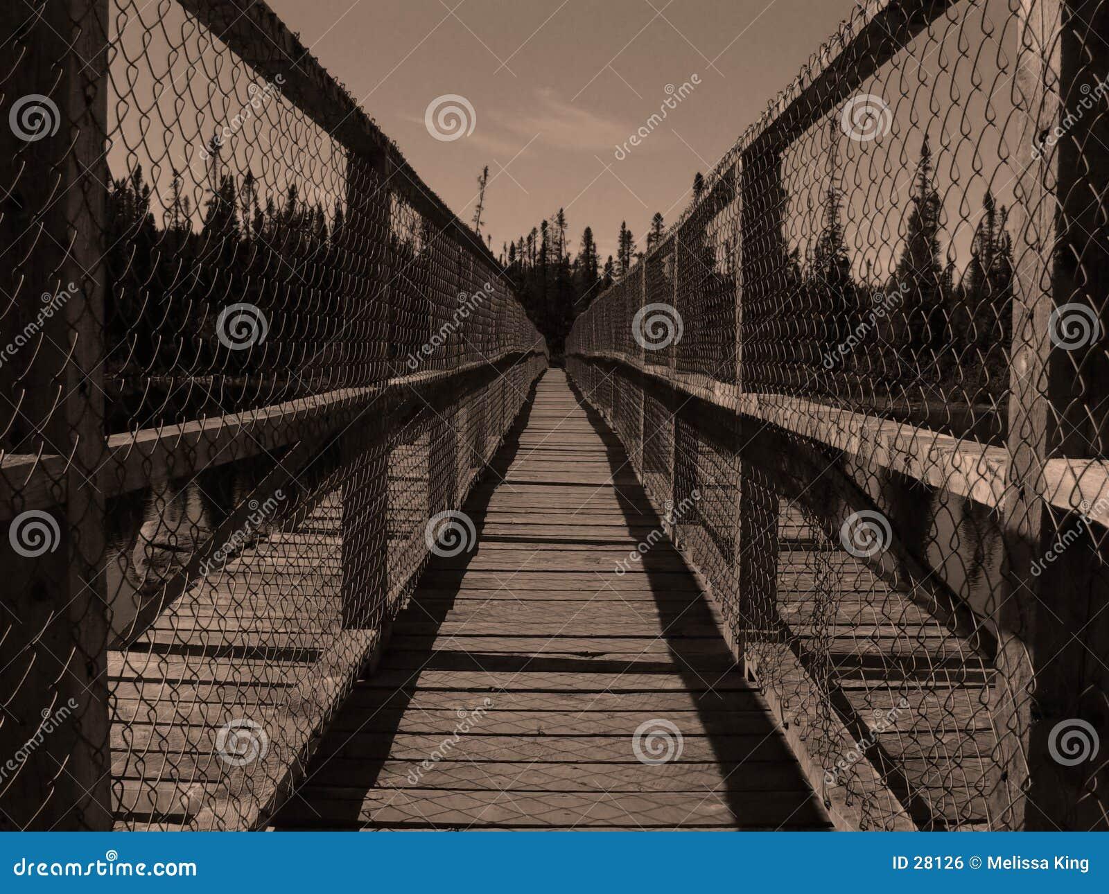 桥梁长的narror