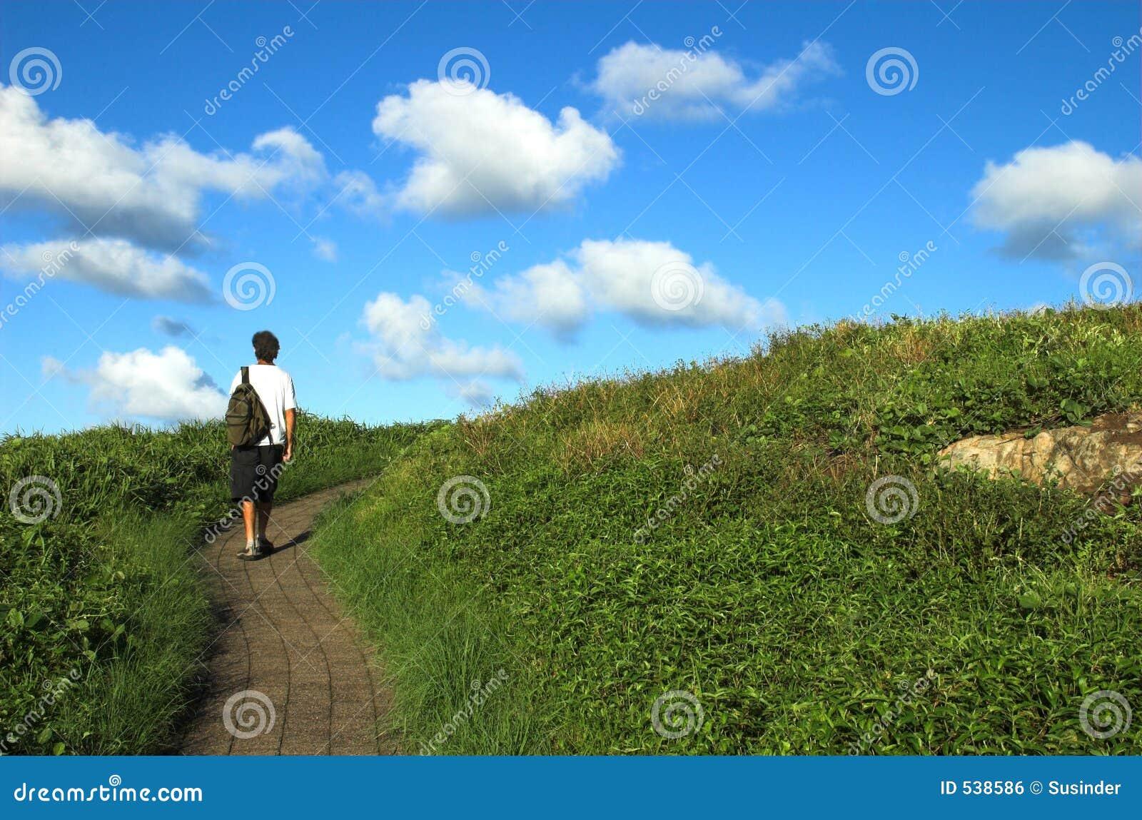 Download 梦想按照您 库存照片. 图片 包括有 成功, 天空, 概念性, 到达, 目标, 云彩, 梦想, 上升, 活动家 - 538586