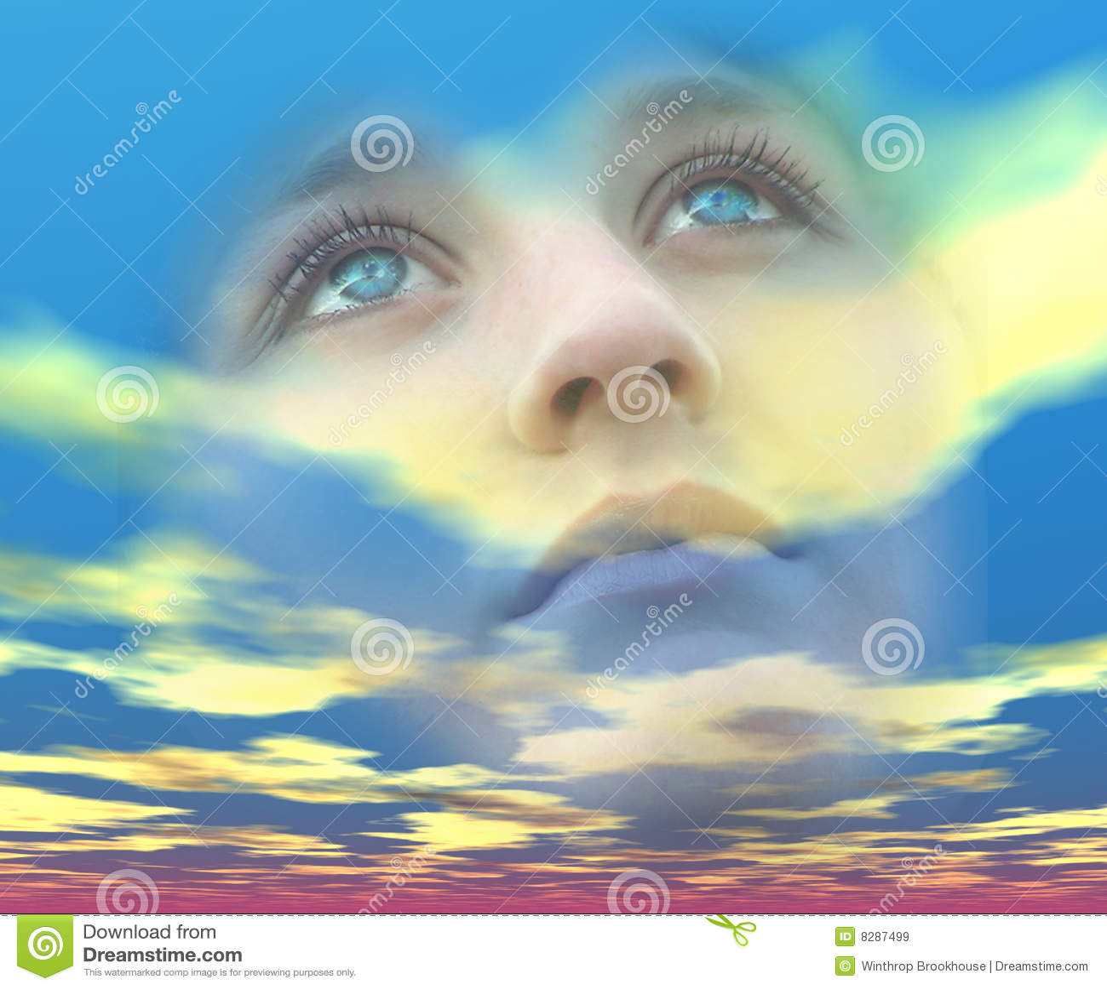 梦想的眼睛