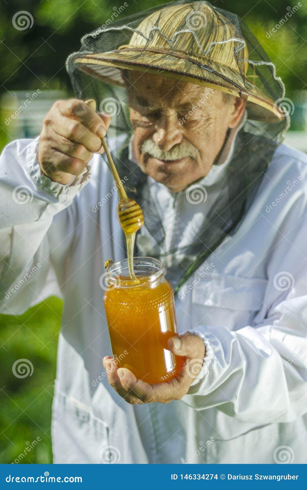 检查他的在蜂房的资深养蜂家蜂蜜