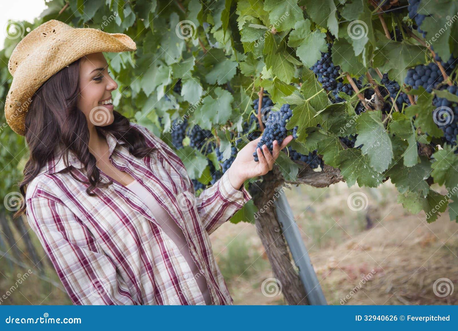 检查葡萄的美丽的女性农夫在葡萄园里