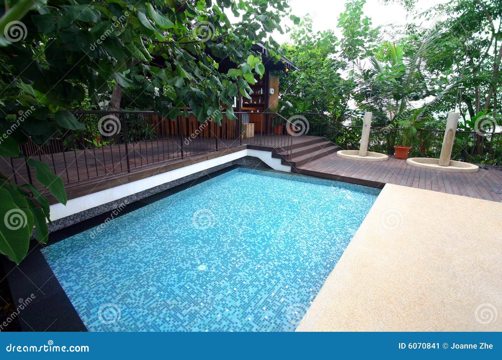 棒旅馆池热带手段的游泳