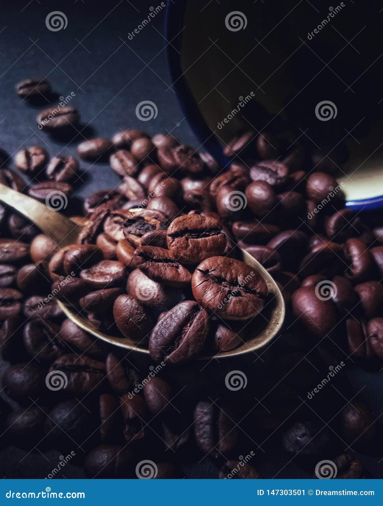 棕色咖啡豆准备滚动