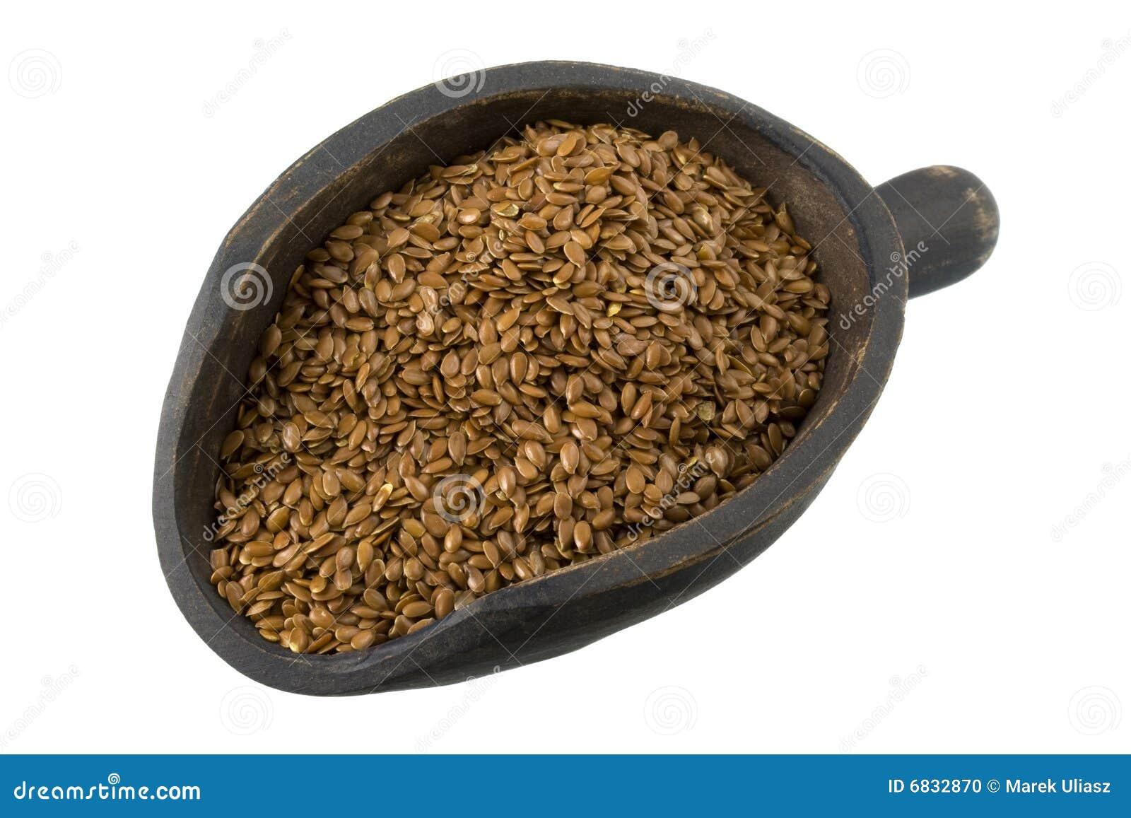 棕色胡麻瓢种子