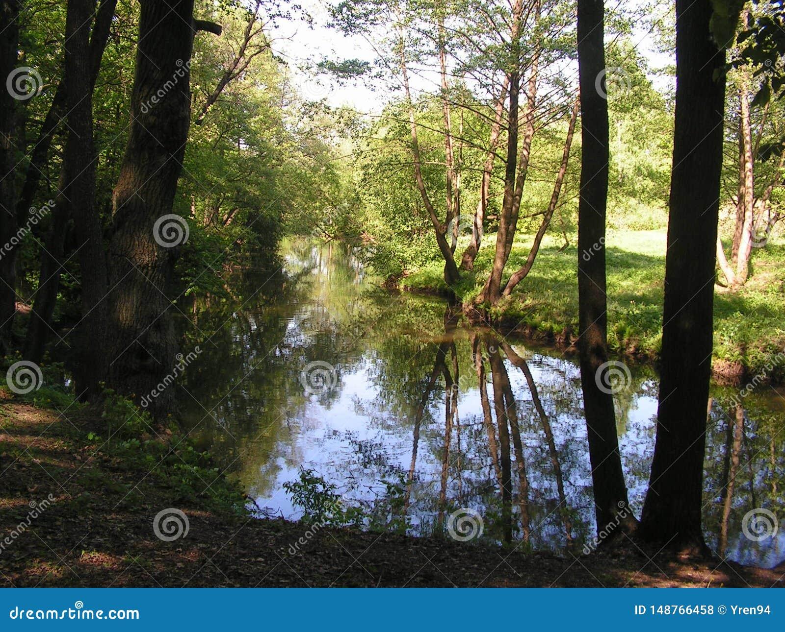 4 森林公园'DROZDY'在米斯克白俄罗斯