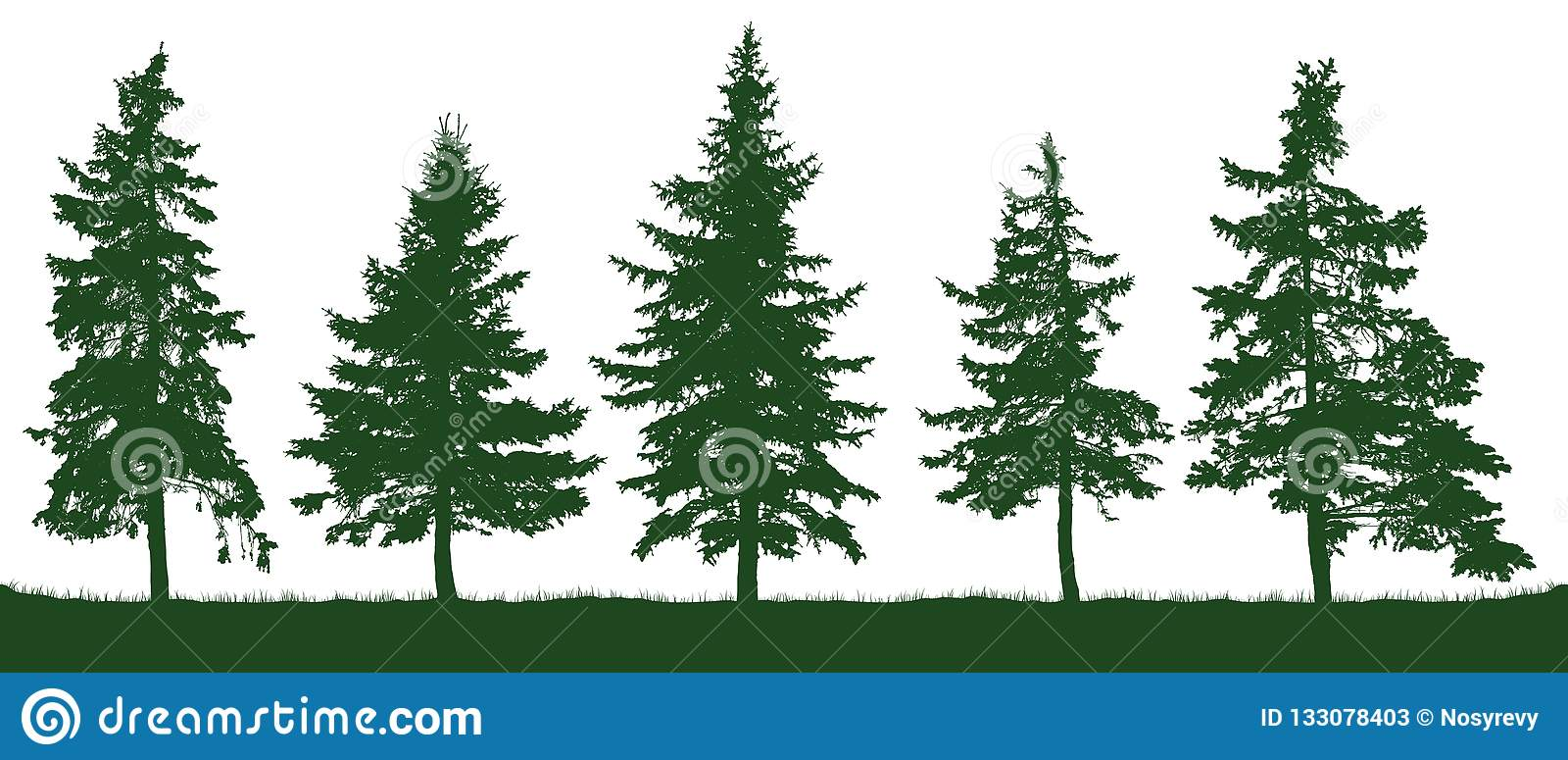 森林冷杉木剪影 圣诞节我的投资组合结构树向量版本