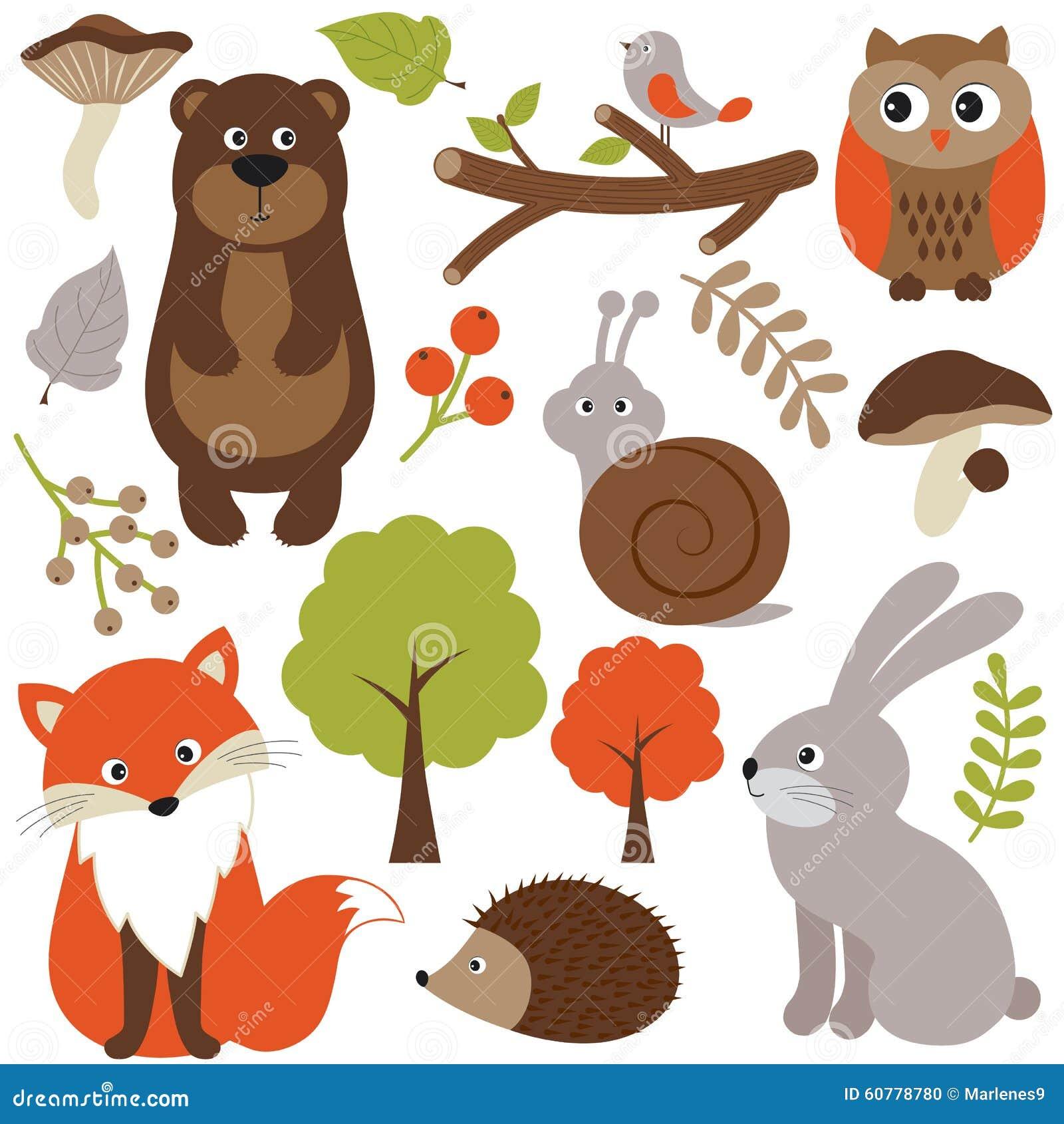 森林地动物图片