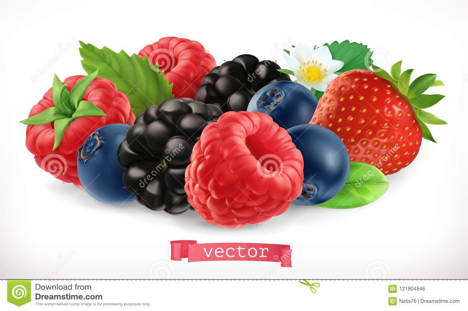 森林果子和莓果 莓、草莓、黑莓和蓝莓 3d图标向量