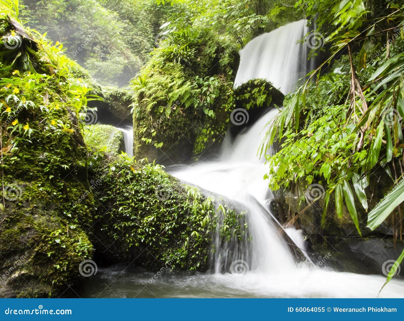 小瀑布在热带森林,北部泰国里.图片
