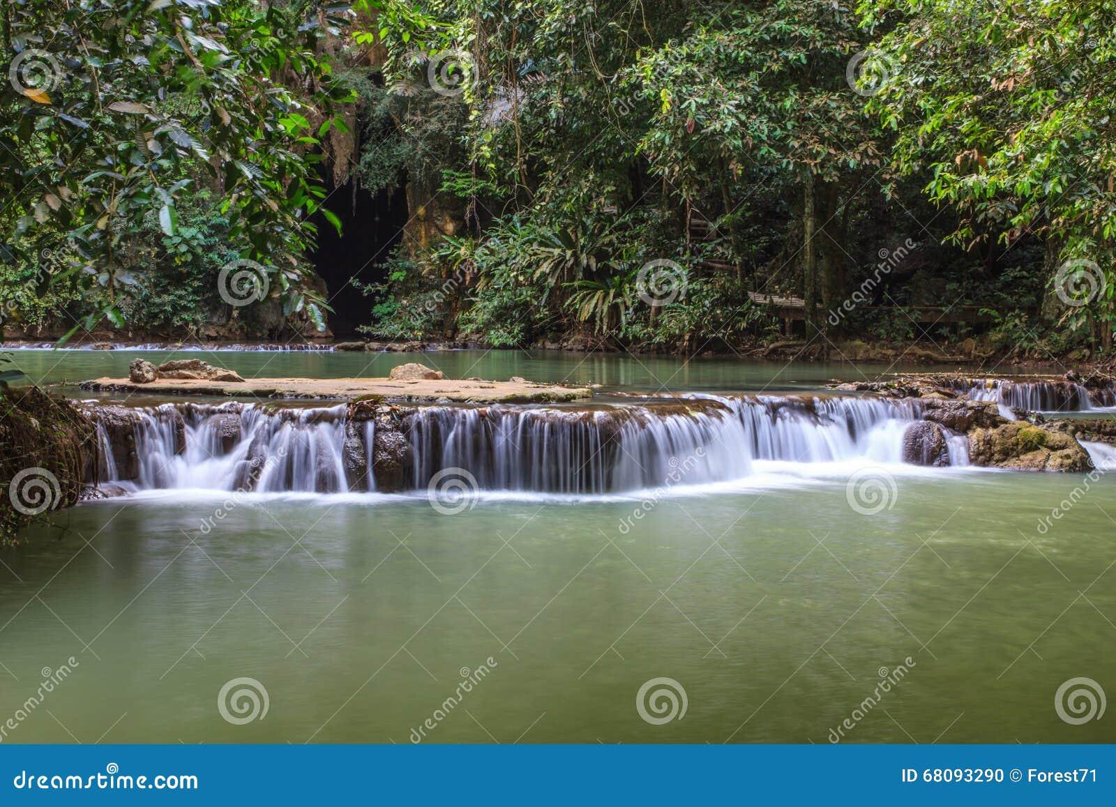 森林热带瀑布图片