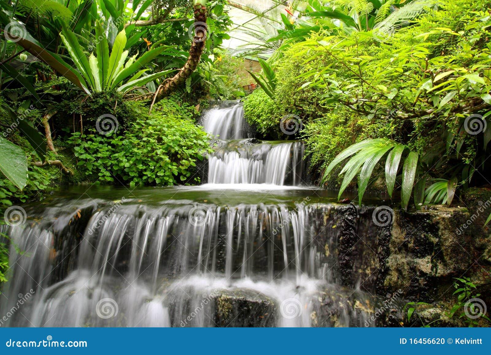 森林雨瀑布