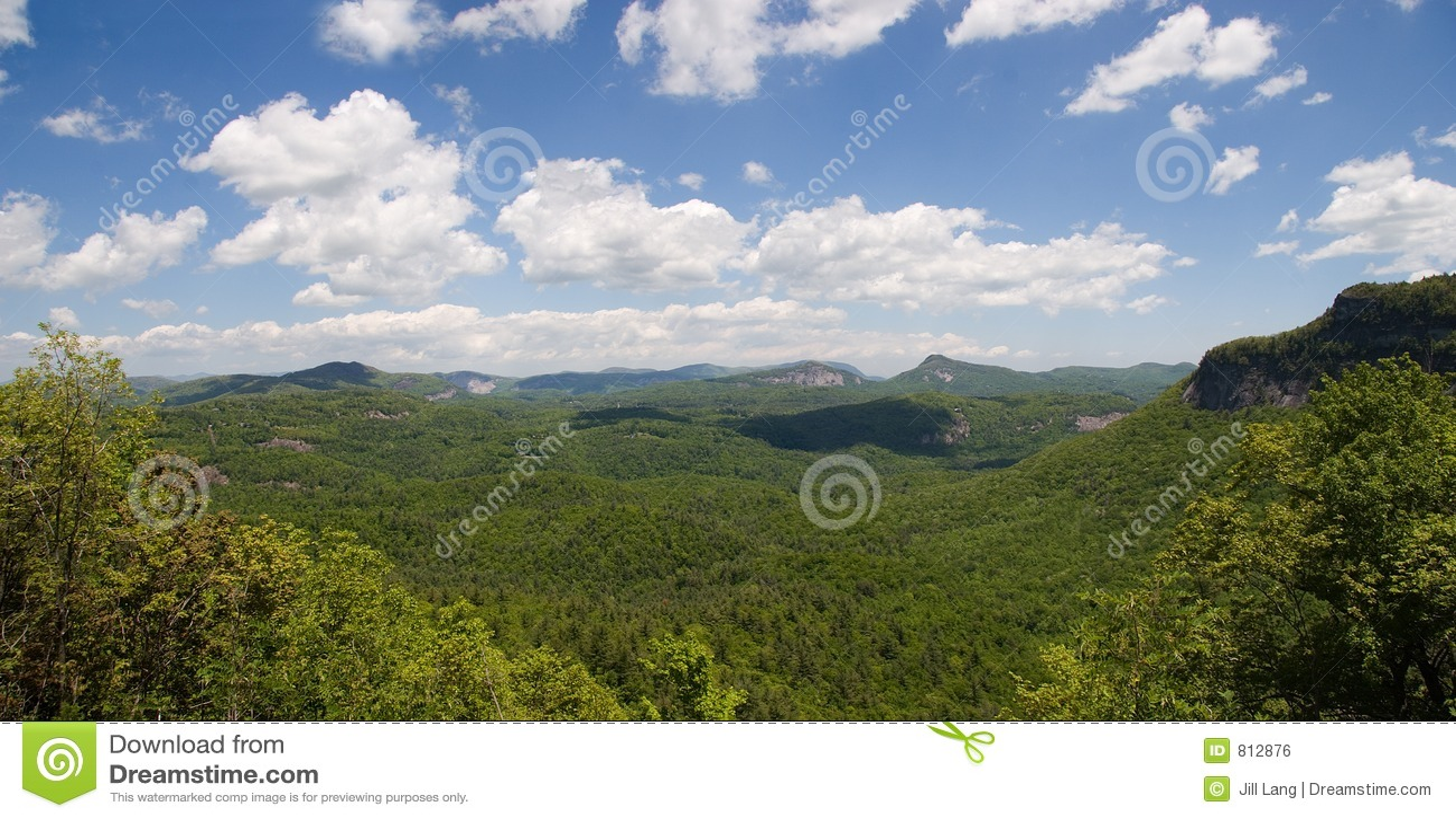 森林nantahala国民全景