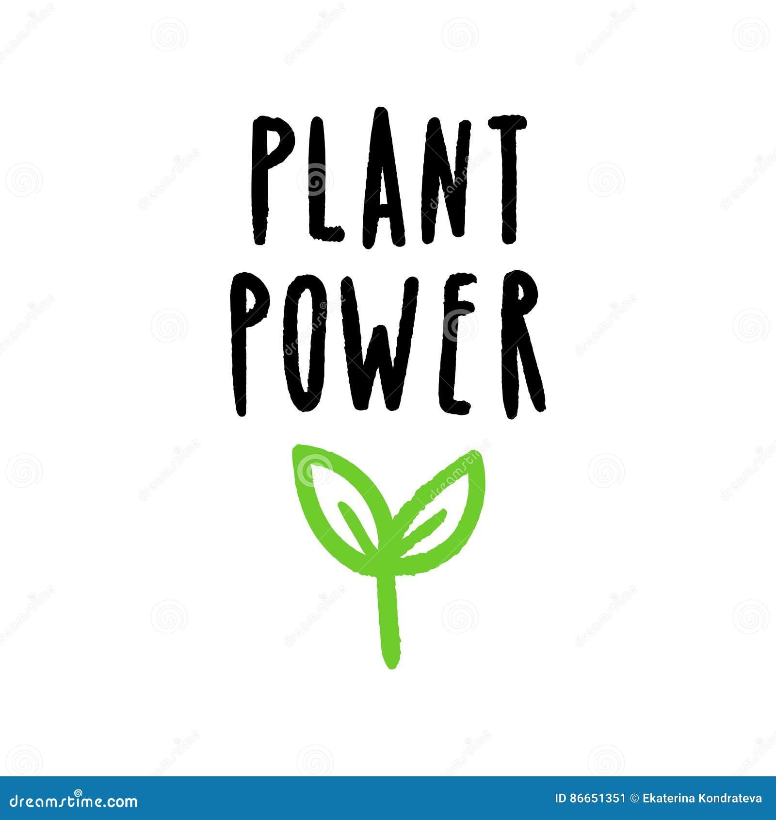 植物力量字法